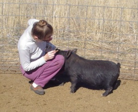 Micki with a 5-month-old gilt.